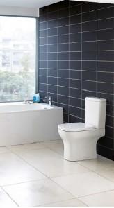 poza Vas WC Ideal Standard complet model  Active pentru rezervor pe vas cu capac soft closing