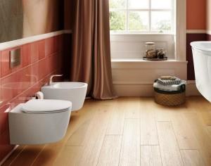 poza Vas WC suspendat Ideal Standard gama Dea, alb, capac inchidere normala